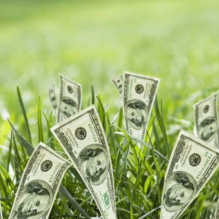 Создай свое изобилие + марафон Про деньги